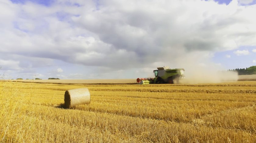 The report provides detailed information on the financial position of farm businesses