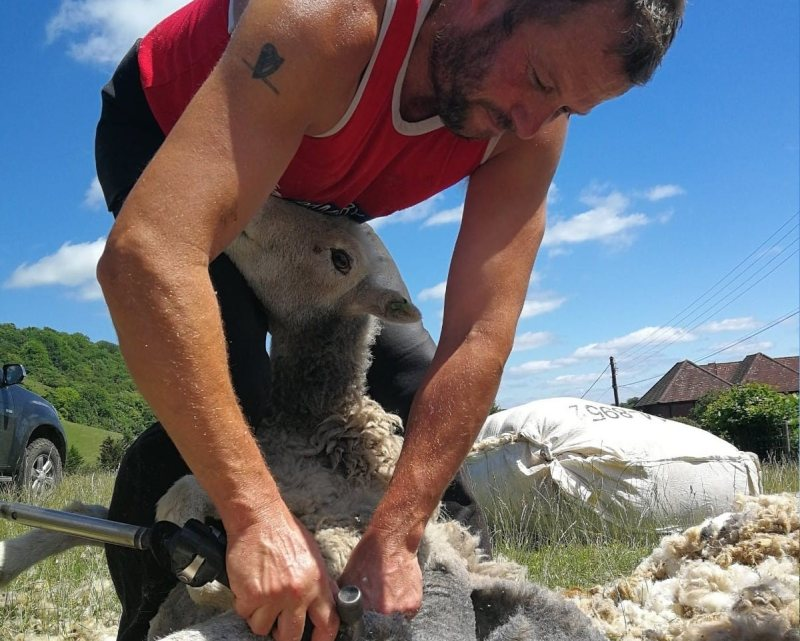 Shearing contractor Ian Lucas described this season as 'very testing at times'