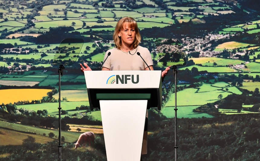 NFU President Minette Batters says there will be 'challenges to overcome' next year