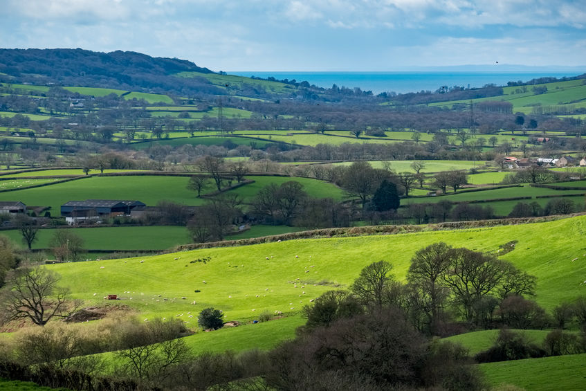 Numerous leading figures in the UK farming industry have been recognised