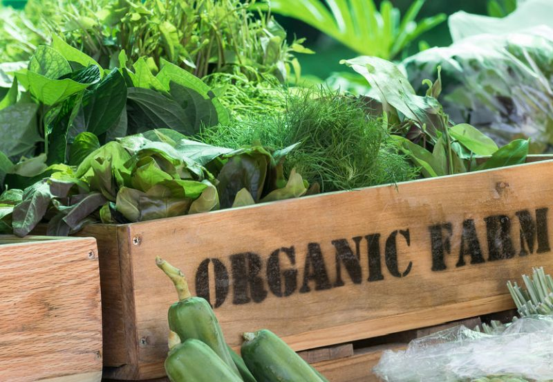 Despite recent growth rates, organic still remains a small part of the market