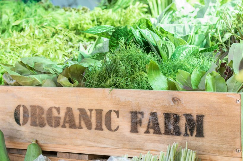 The UK is the world's ninth largest organic market, figures show