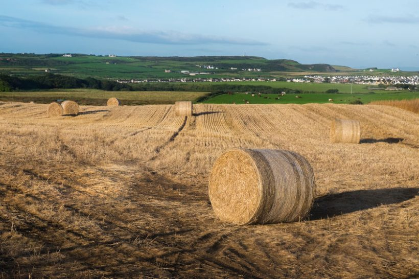 There are a number of tax implications to consider when buying a farm or farmland
