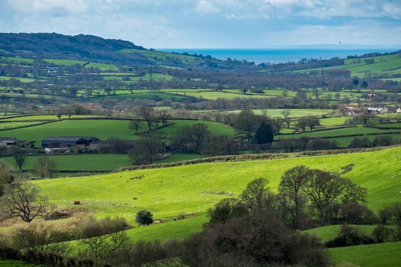 Public interest in amenity farms was 'unprecedented' last year, according to a new report