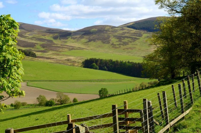 Competition buoys Scottish farmland after supply hits record low
