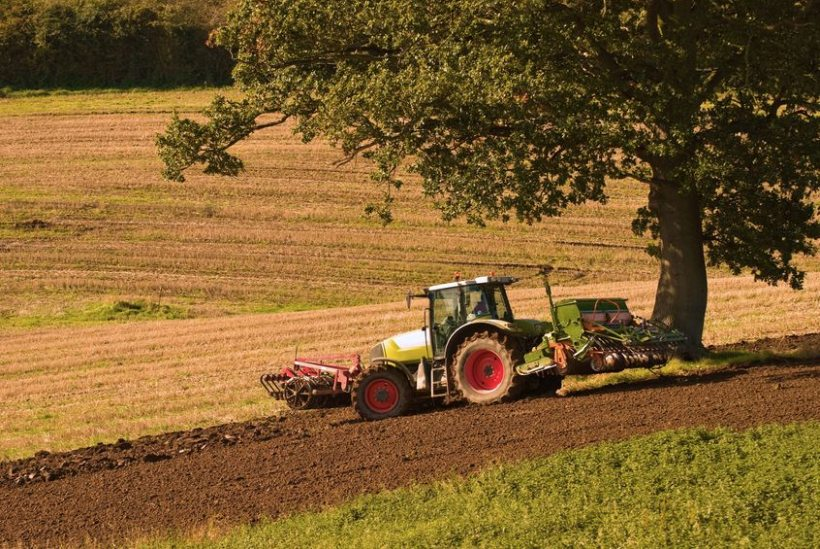 There is no single lifespan of the world's soils, according to the Oxford University scientist