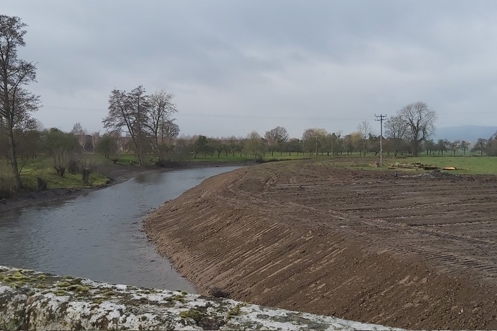 The Forestry Commission says no further action will be taken (Photo: Herefordshire Wildlife Trust)