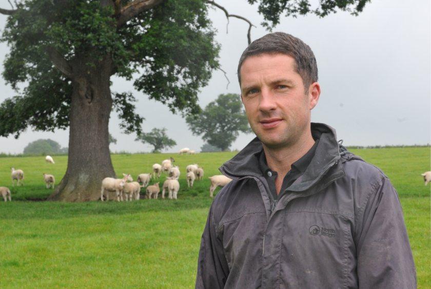 Sheep producer David Lewis has shared his experiences of lambing ewe lambs