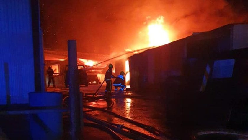 All livestock were moved to safety before crews arrived (Photo: Burnham-on-Sea Fire Station)