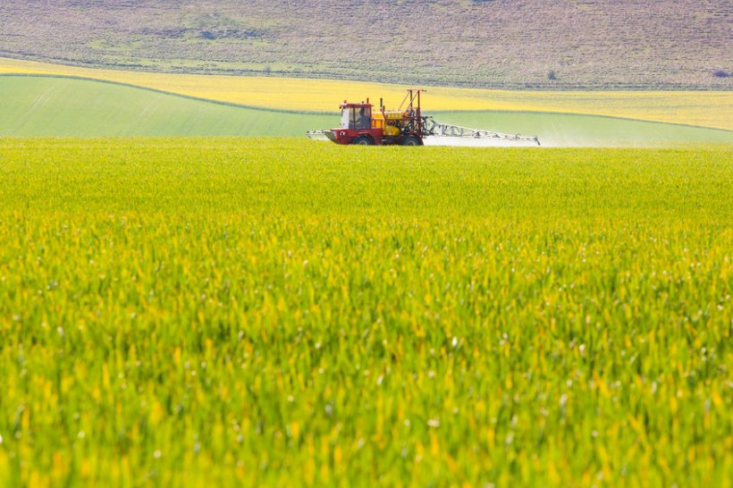 The existing National Action Plan for the Sustainable Use of Pesticides was adopted in 2013