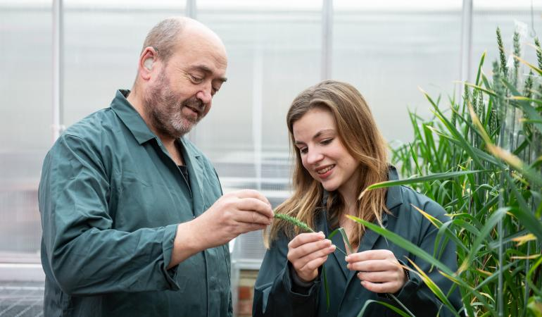 The UK researchers are hoping their trial gets approved by Defra, with a start date set for autumn
