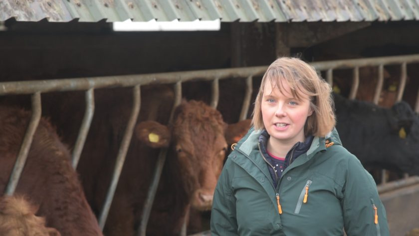 FAS TV will deliver technical messages to farmers and crofters across Scotland