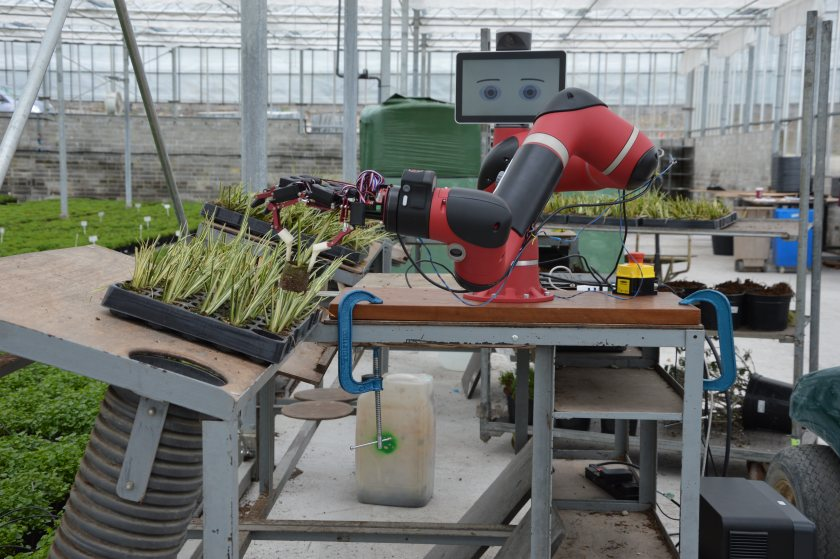 Developments in automation have helped reduce growers' reliance on labour