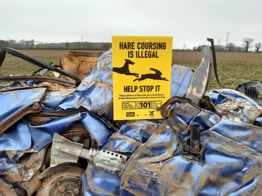 Reports of hare coursing have been increasing in recent years