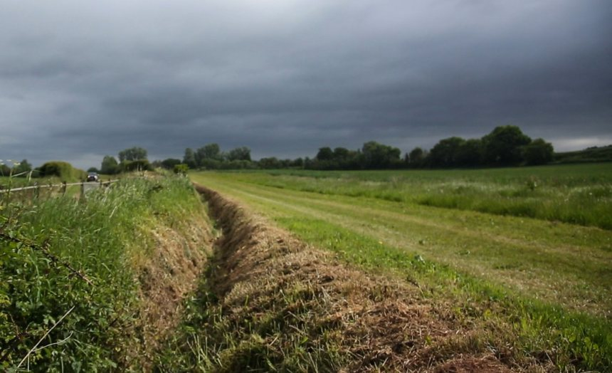New environmental and biodiversity funding is available for farmers in the Midlands