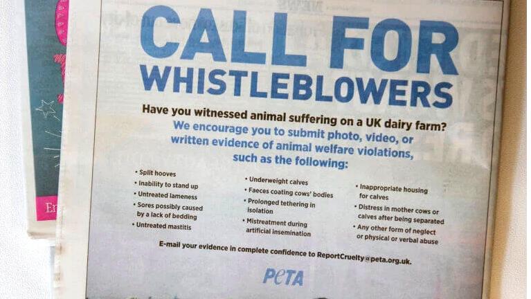 (Photo: PETA UK/Twitter)