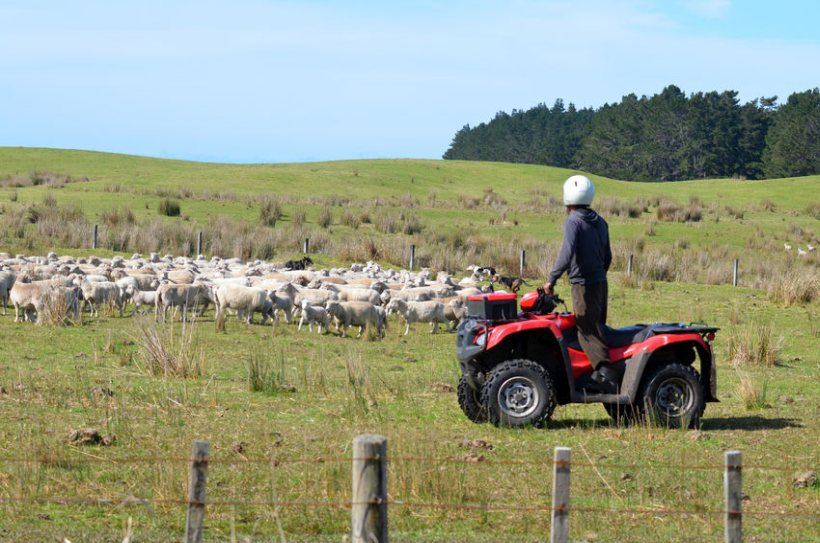 Rural thieves are targeting expensive quad bikes used by farmers to tend to livestock during lambing