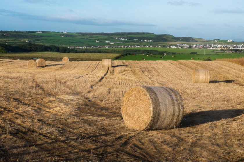 Total Gross Output for the region's farming industry was 4% higher last year