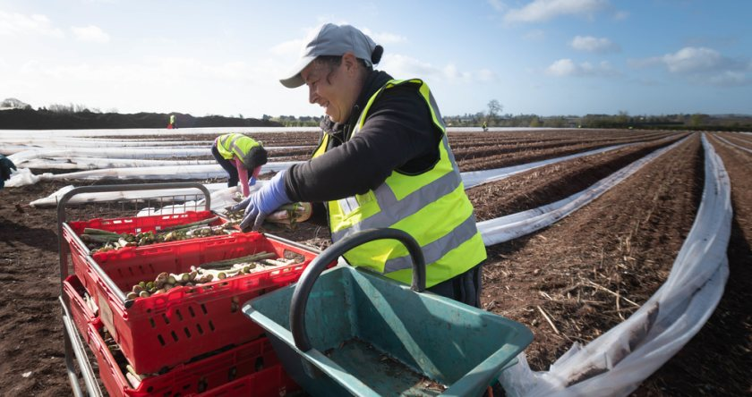 Seasonal farm worker recruitment has been impacted by Covid-19 restrictions