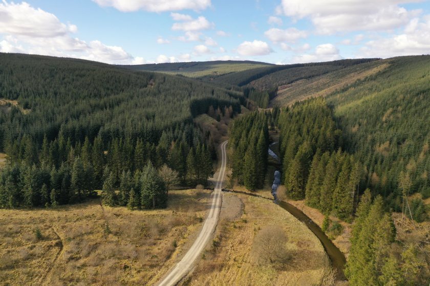 The launch of the forests comes at a time of continued buoyancy in the commercial forestry sector