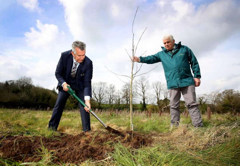 Edwin Poots, NI's farming minister, planted an oak tree in commemoration of the life of the Duke of Edinburgh