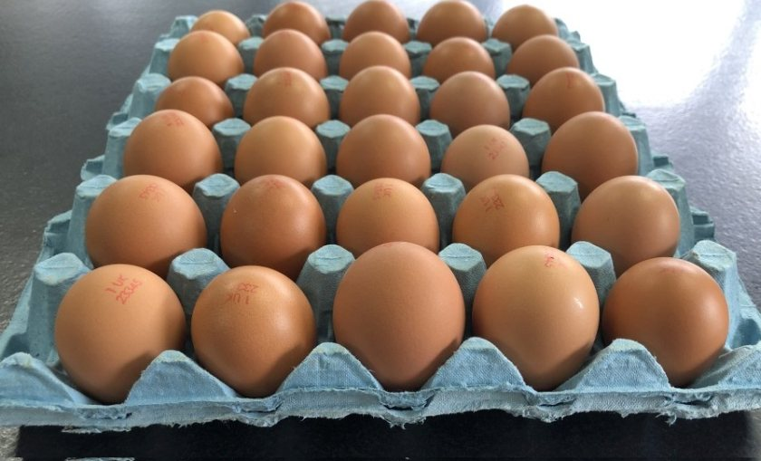 A new collaboration is urging the public to buy a wider range of egg sizes