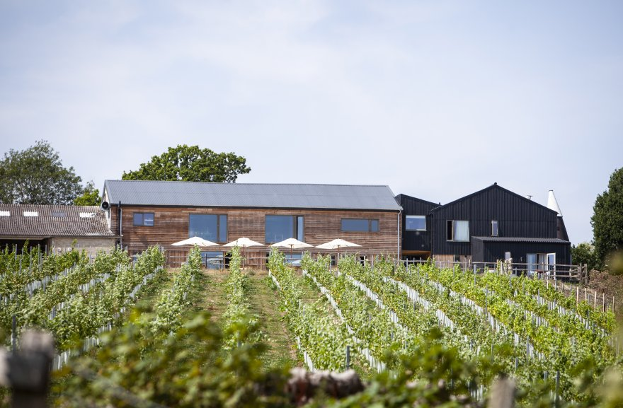 The farm has put a focus on employing sustainable and regenerative methods