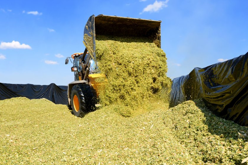 Farmers are being urged to check their silage clamp ahead of the first cut of the season