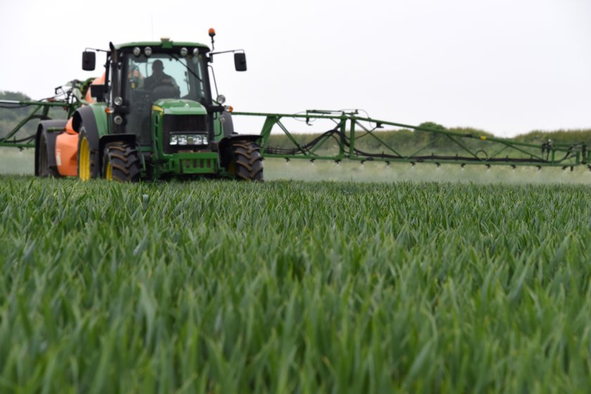 A robust T2 fungicide programme is advised to tackle the hidden threat, Corteva Agriscience says