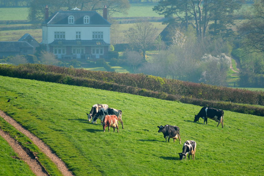 UK farmers producing to high standards could be undercut by lower-standard imports, the NFU warns
