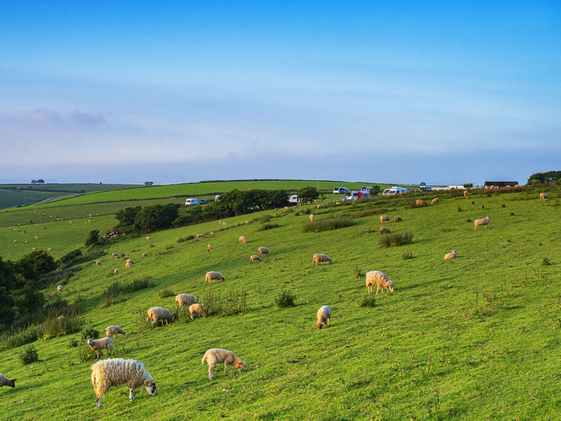 Farmers wanting to leave the industry will be offered a lump sum payment, Defra has confirmed