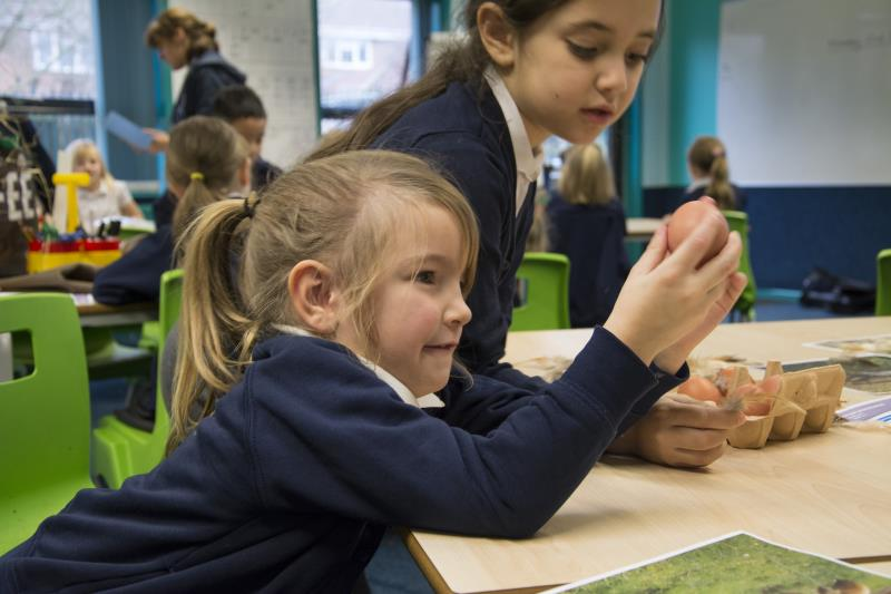 Agriculture can be used effectively with STEM lessons, the NFU says (Photo: NFU Education)
