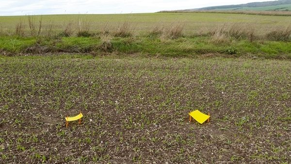 As part of the study, farmers were equipped with yellow sticky traps, mounted horizontally just above the crop