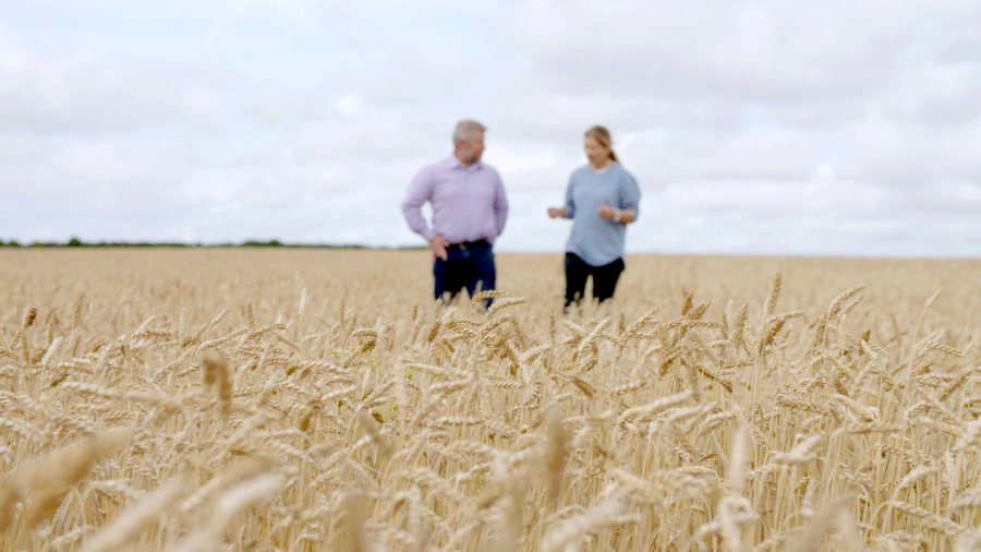 Organic arable farming saw a 7% increase in 2020, Defra's figures show (Photo: Soil Association)