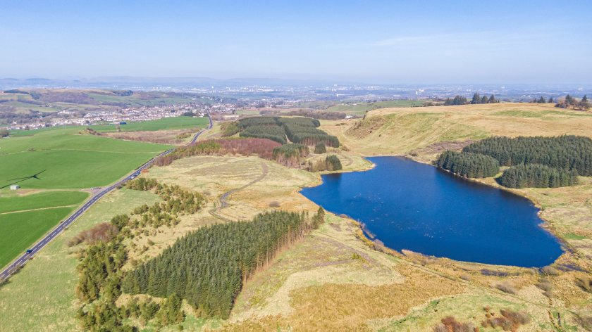 Craig O'Neilston presents an opportunity to acquire a commercial forestry investment (Photo: Galbraith)
