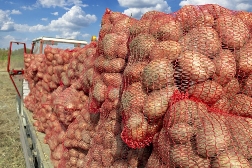 Potato growers who have been affected by the pandemic will be issued the funds