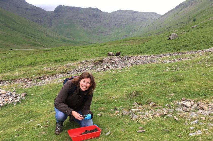 Wiltshire farmer Sally-Ann runs a project on her farm to revive its dung beetle population