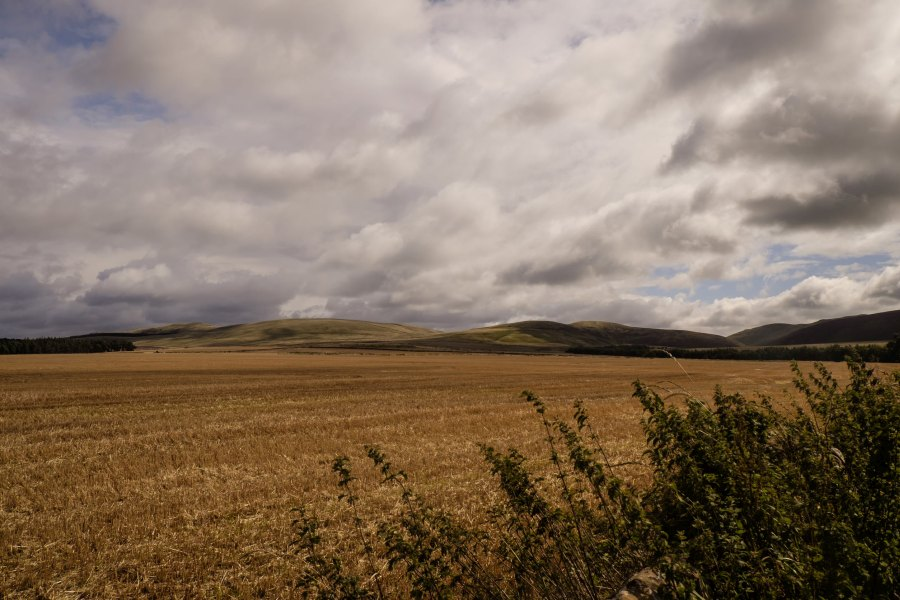 This map will provide greater insight into rural land use in Scotland