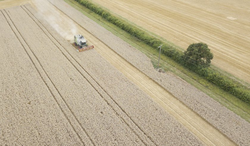 Corteva Agriscience will team up with Gentle Farming to offset carbon emissions