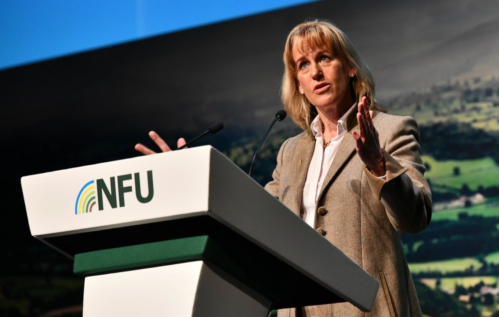 Tariff liberalisation and imports could lead to pressure on farmgate prices, NFU President Minette Batters warns