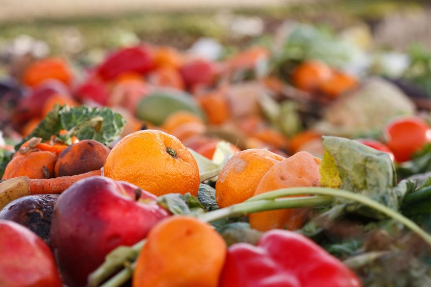 The report says farmers need support in measuring and then reducing food waste