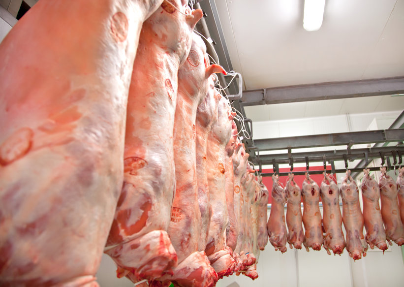 Close to 40% of sheep and 30% of beef cattle in Scotland still failing to meet market specifications