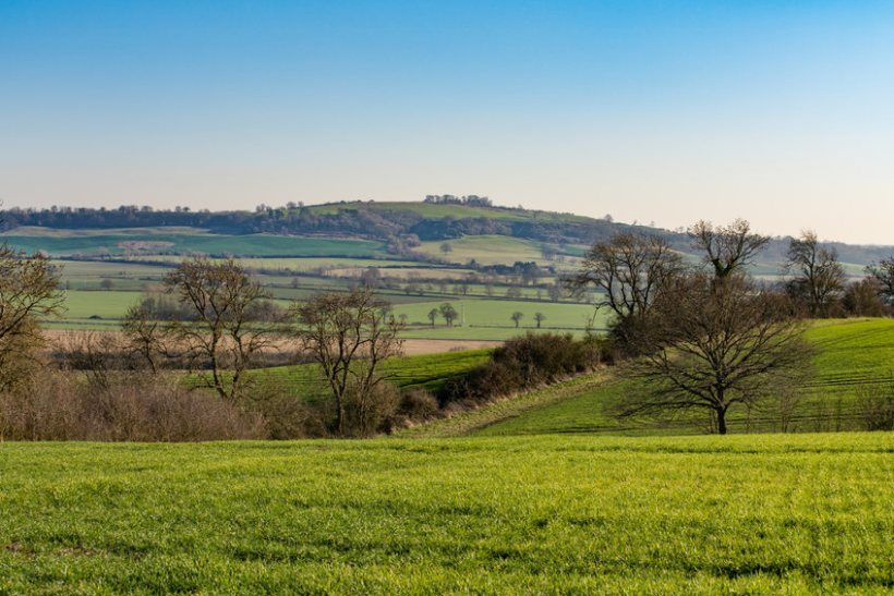 The government's levelling up agenda must recognise the value of rural areas, the NFU says