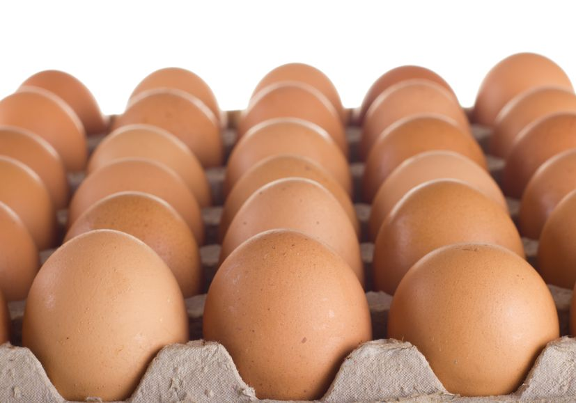 The GCAW is looking into how the food industry can increase supplies of cage-free egg products