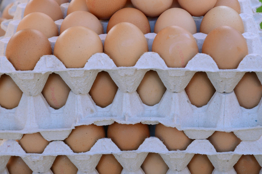 Researchers say pulsed ultraviolet light could be used by the poultry sector as an effective alternative