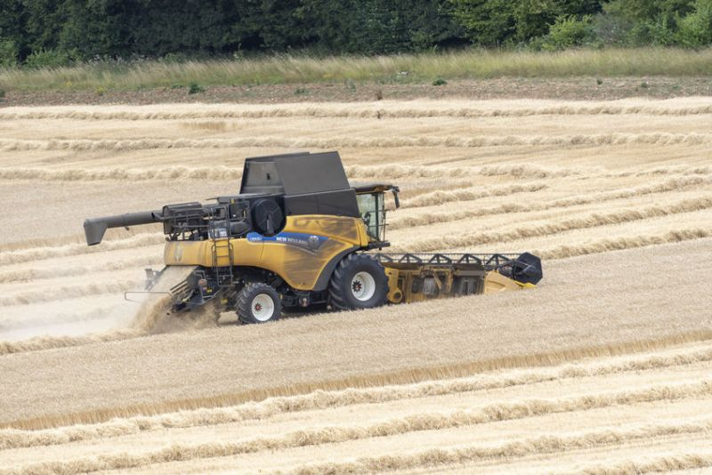 Defra has released the first estimate of the quantity of wheat and barley produced in the UK from the 2021 harvest