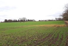 Land at Appleton